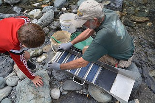 a boy and his grandfather PROSPECTING gold